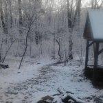 Appalachian Trail:  Bluemont, VA (Snickers Gap) > Linden, VA